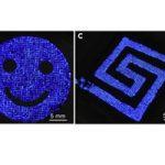 Forscher entwickeln leuchtende Strumpfhosen